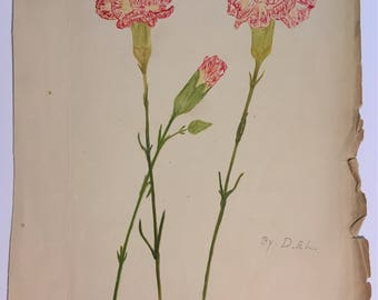 Antique signed original watercolor painting of pink carnations