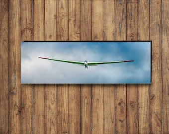 Gliding Like a Bird - Photograph on Canvas 12x36inches