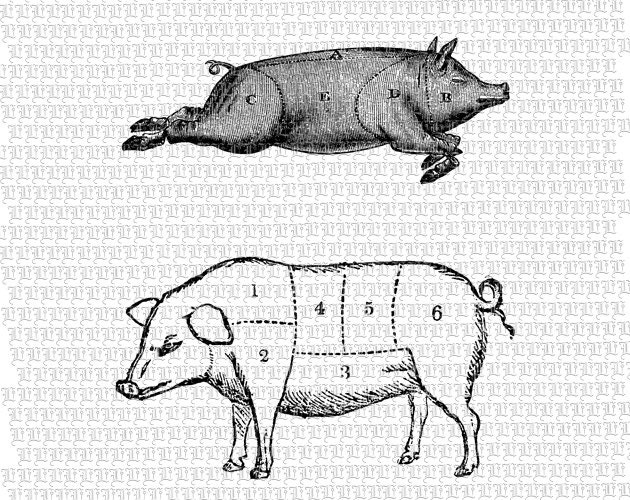 4 H likewise 2 Swine Pig Butcher Meat Chart Vintage additionally Cut Butcher Diagram Pig together with Job Pages likewise Diagram Of Beef Cuts Meat. on meat butcher chart printable