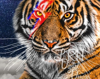 Bowie Tiger Digital Download