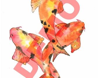 Orange Koi Watercolor Digital Art