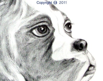 """SAMPLE of Fine Art, Pencil Drawing """"THINKER"""" 14 X18 Commission your Pet Portrait today"""