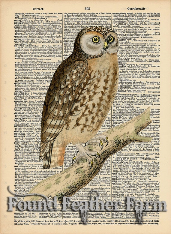 """Vintage Antique Dictionary Page with Antique Print """"Owl On a Branch Two"""""""