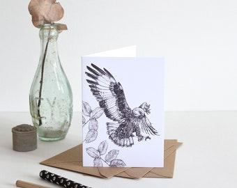 Jackal Buzzard Illustration - Greetings Card