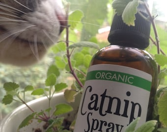 Cataire bio Spray 2oz