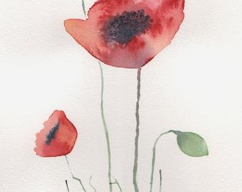 "Original Watercolour Poppy Painting - ""Remember"""