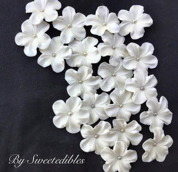Edible white flowers choice image flower decoration ideas white gum paste flowers edible cake decorations 25 piece mightylinksfo mightylinksfo