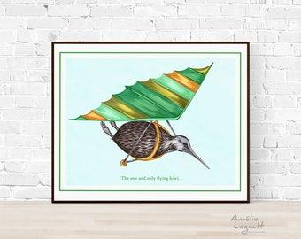 Flying kiwi bird print, hang-gliding kiwi bird print, 5 x 7, 8 x 10 and 11 x 14