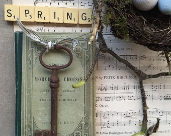 Beautiful Antique rusty French Key.