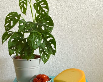 Kaasplankje van keramiek | Blau glazuur met een bloem patroon | Een Keramisch plankje met kommetje