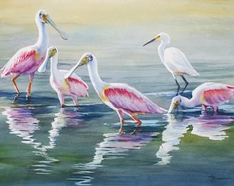 Roseate spoonbill, egret, marsh birds in water, watercolor print