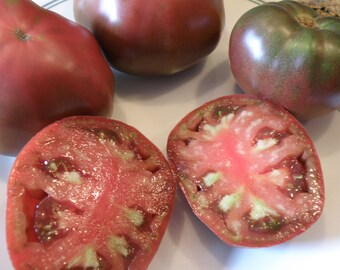 Gypsy Heirloom Tomato, Open Pollinated and Organically Grown Heirloom Tomato, Non GMO