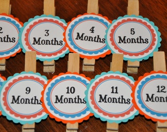 Orange. Blue. Teal Photo Clips. Photo Clips. Month Clips.. Set of 13. Newborn-12 Months. First Birthday.