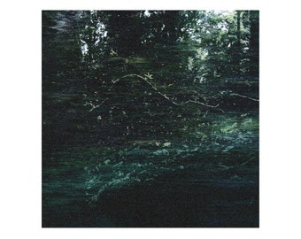 Signed Limited Edition Print of 10 - 'Harmony with the Forest' - Digital Print