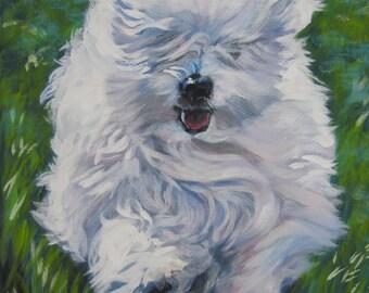 Coton De Tulear art CANVAS print of LA Shepard painting 8x10 dog art
