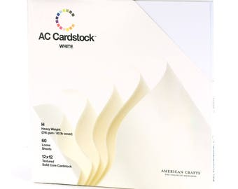 "050-12 x 12 ""textured cardstock - white"