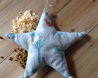 Decorative star with birth date