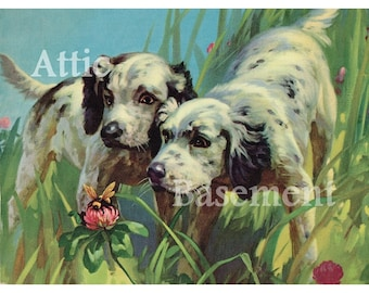 Vintage Print Two Dogs Exploring Bumble Bee in the Grass