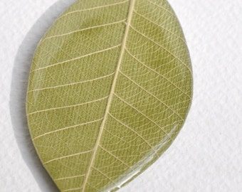 Hand made Skeleton Leaf with Paper and Resin - Large