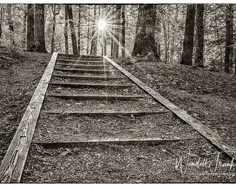 Stairway To Heaven (Sepia) E249. Towards the light, the way forward, the future, progress, encouragement, success, overcoming, ladder, climb