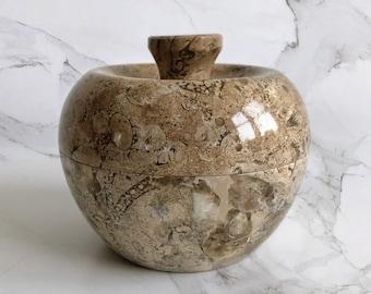 Fossilized Stone Jar