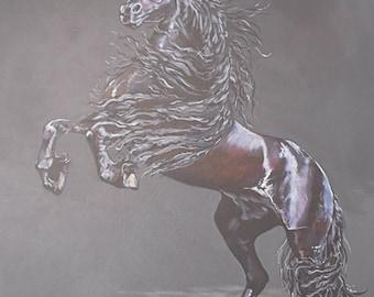 Stallion Print - Mounted