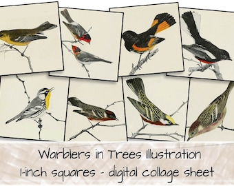 Birds in Trees Drawings 1-inch squares digital collage sheet 0105