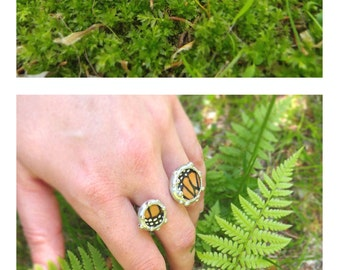 Real Monarch Butterfly Wings Ring - Nature Inspired Jewelry - Size 7.5 - 8