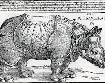 Albrecht Durer: Rhinoceros. Fine Art Print/Poster (00160)