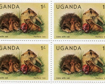 Lions with Cub Stamps/50 Unused Stamps/ Stamps From Uganda