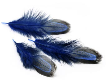 50pcs Natural Pheasant Feather 3-8cm / 1-3 inches Feathers Hair Feathers Craft Supplies Wholesale Feathers YM312