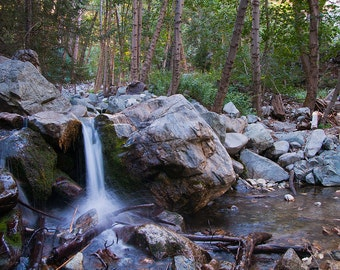 Icehouse Canyon / Cucamonga Wilderness / Angeles National Forest /  Landscape Photography