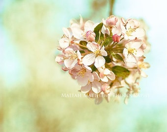Ball of Flower Blossoms Photograph, spring home decor, bright wall art