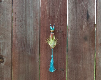 Golden Turquoise Tassle Airplant Necklace Boho Tillansia Sandstone
