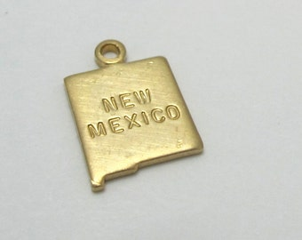 Engraved Tiny Raw Brass New Mexico State Charms (6X) (A430-A)