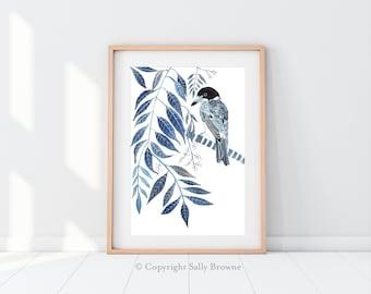 Australia Wall Art Print Illustration Indigo Butcher Bird Botanical Print Blue and White by Sally Browne