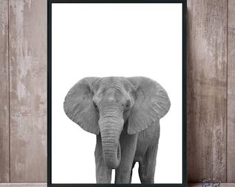 Elephant Print, Black and White, Elephant Art, African Art, African Animal, Safari Animal, Animal Print, Elephant Photo, Elephant Poster