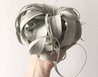 Air plant Tillandsia Xerographica | airplant | airplants | christmas gift | house plant | live air plant | air plant alone | planta del aire