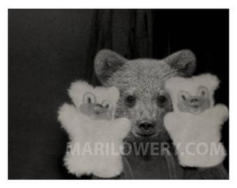 Weird Wall Art Black and White Bear Cub with Bear Hand Puppets 11 x 8.5 Inch Mixed Media Collage Anthropomorphic Wall Art Print, frighten