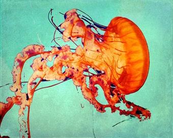 Jellyfish Art Print - Aqua Orange Beach House Home Decor Nursery Childrens Room Ocean Art Photo