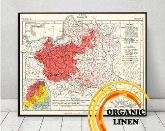 Old map Poland on linen 1916. 15 x 17 inch Vintage map. Polacy. Poles. Polish. Romer. language map. map art. polish territory on map. atlas