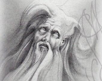 """Martinefa's original drawing - """"Merlin"""""""