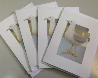 Summer Seagull- blank greeting card