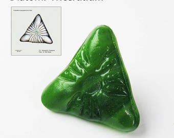 Diatom Triceratium Cast Glass  Pin