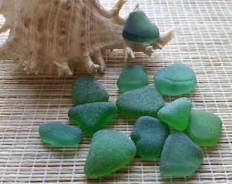 12 medium green sea glass, authentic beach glass. Genuine sea glass. Beach decor, home decor, mosaic, art, jewellery making #58#