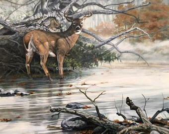 Creekside Whitetail Original Acrylic Painting