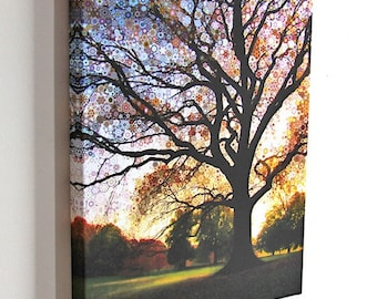 Morning Star Tree -  8x10 gallery wrap canvas  / psychedelic surreal tree / nature goddess art