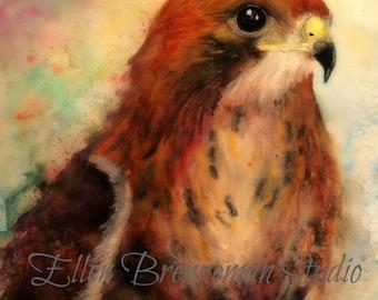 Hawk art print: bird wall art bird decor bird gift idea hawk decor hawk gift idea hawk wall decor bird art woodland nursery art bird art