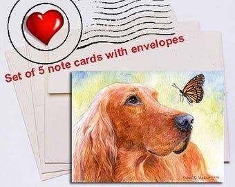 Discovery, Irish Setter Note Card Set