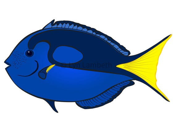 fish clip art instant download blue tang clipart commercial rh etsy com Shark Clip Art Shark Clip Art